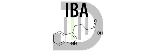 Indol-3-Buttersäure (IBA)