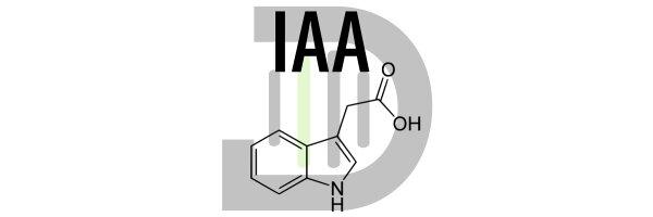 Indol-3-Essigsäure (IAA)