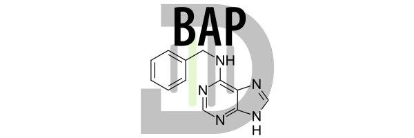 Benzylaminopurine (BAP)