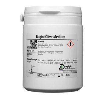 Rugini Olive Basic Medium
