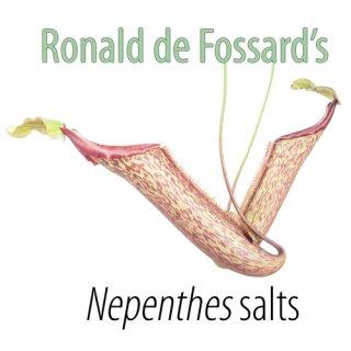 R. de Fossards Nepenthes Basis Salze + MS Vitamine