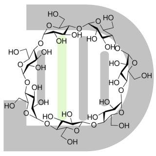 ß-Cyclodextrin